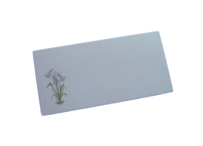 scottish place card bluebells