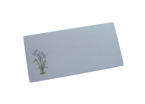 scottish place card bluebells