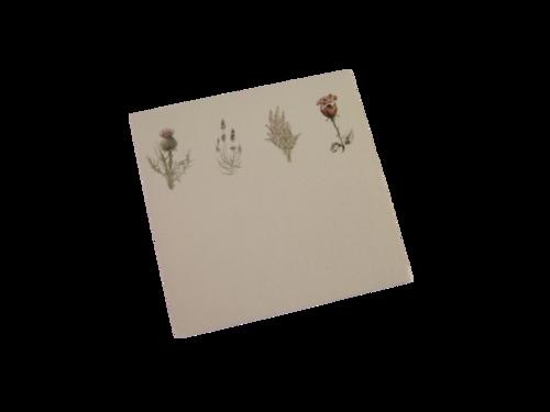 scottish place card thistle rose lavender heather