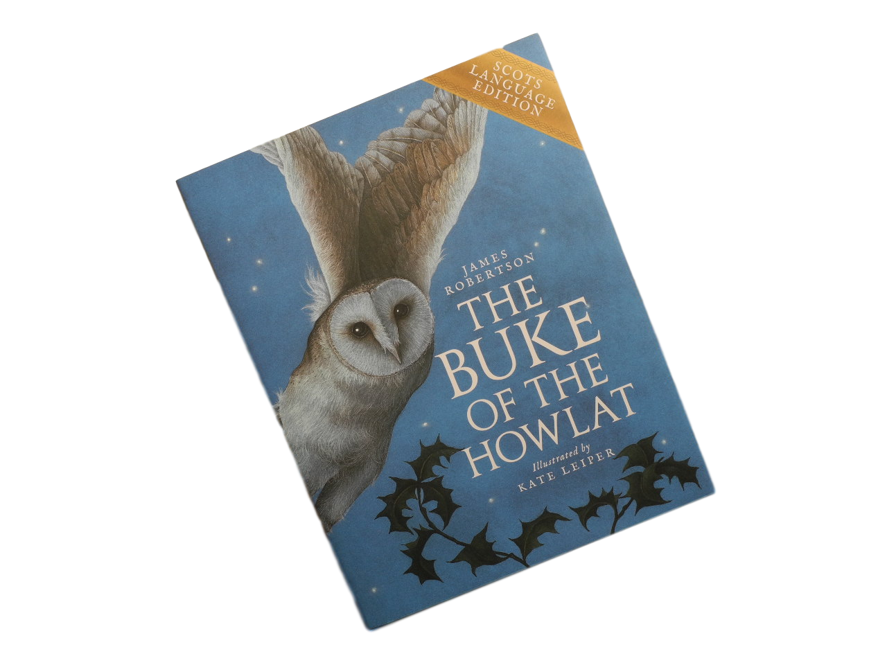 Childrens book owl scots language