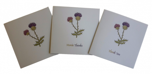 scottish thistle thank you note cards Scots language