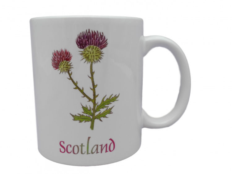 Scottish mug thistle scotland