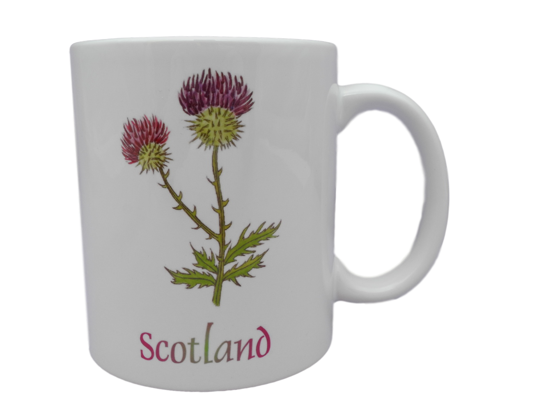 Scottish mug thistle scotland