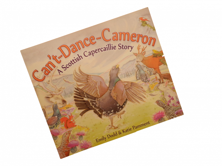 scottish book for children can't dance cameron